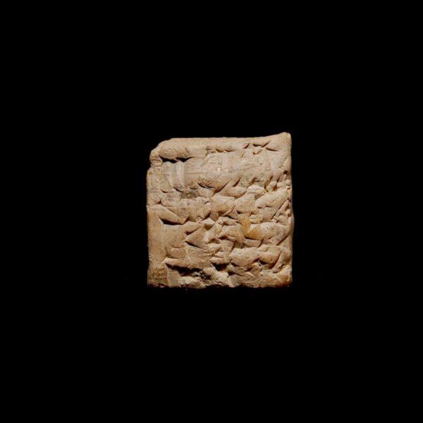 Cuneiform Ammi-ditāna