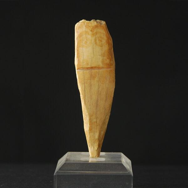 Parthisches Beinidol