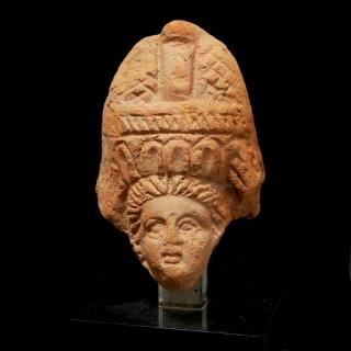 Head Alexandrie