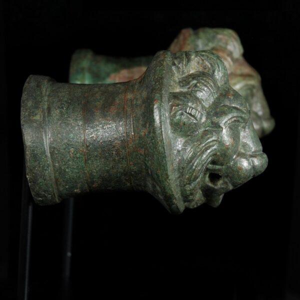 Bronze Lionheads