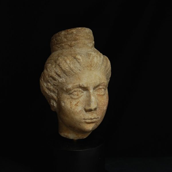 Portrait Head of a Lady