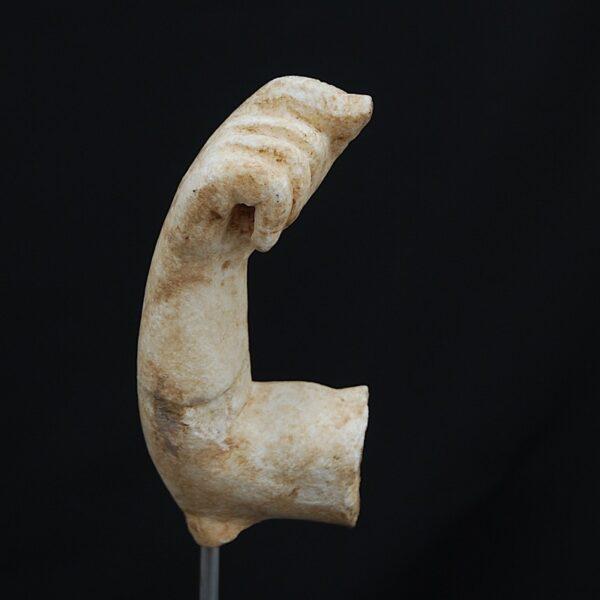 Zeus Arm