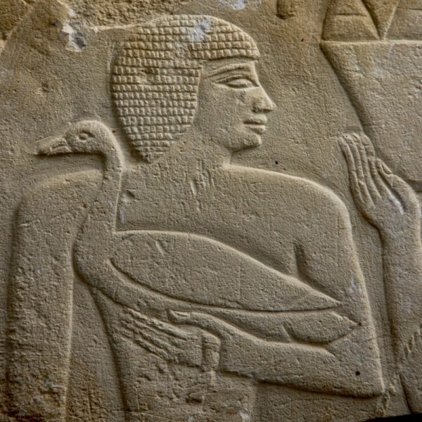 Old Kingdom Relief Detail