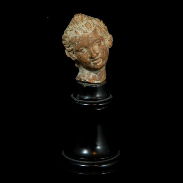 Hellenistic Head of a Woman
