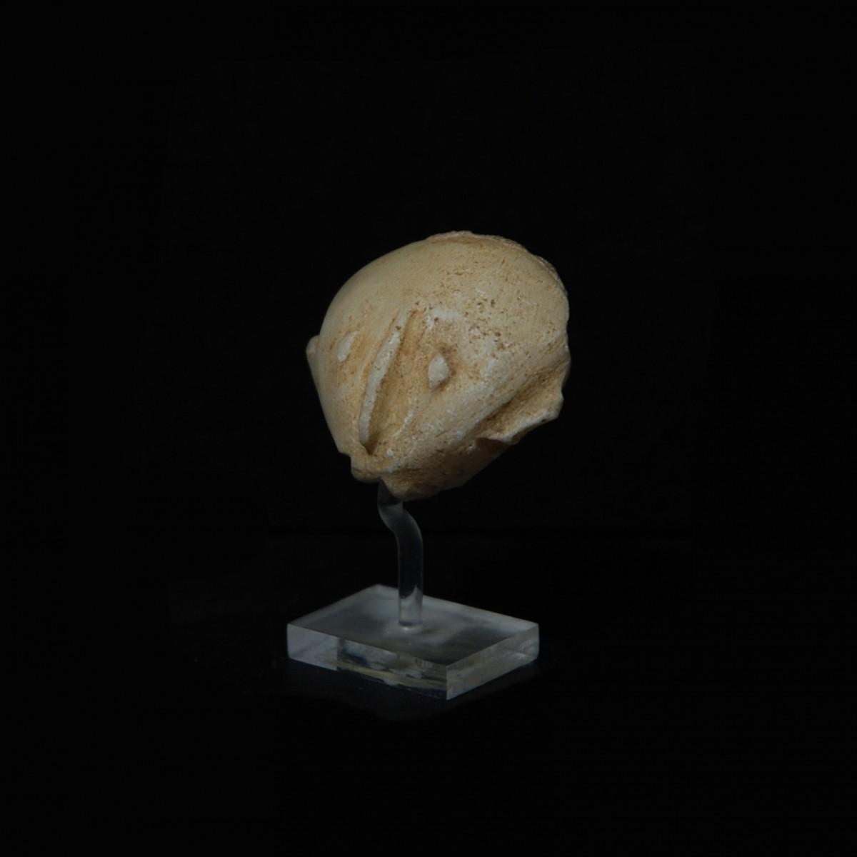Kiliya Head left