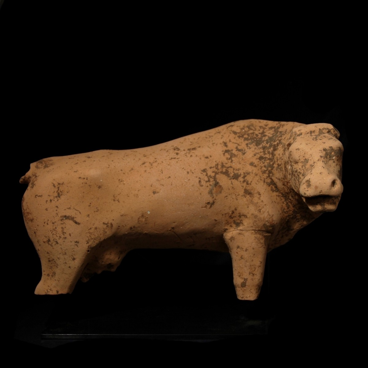 Monumental Greek Votive Cow