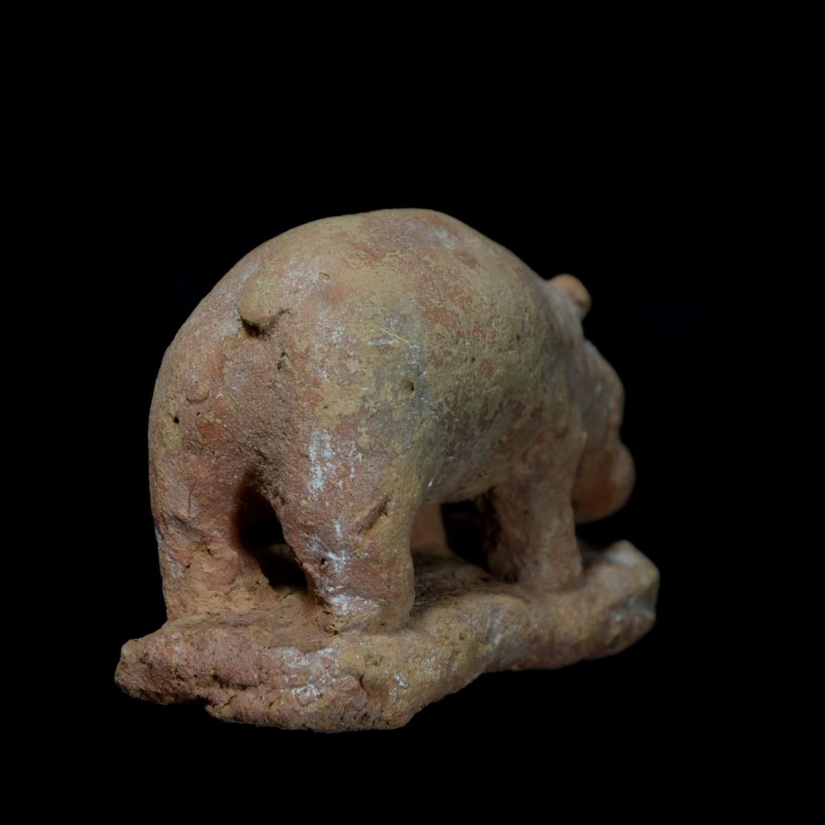 Large Egyptian terracotta hippo back