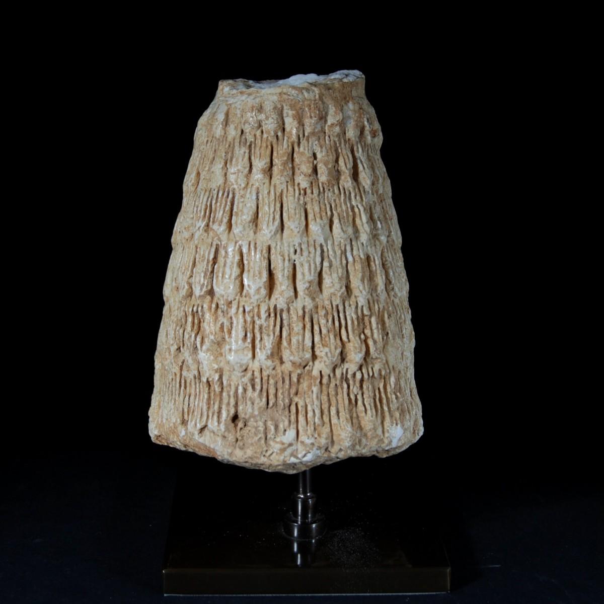 Sumerian Kaunakes total